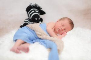 Neugeborenenshooting Stofftier Zebra