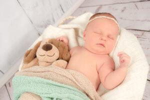 Neugeborenenshooting Stofftier Hund