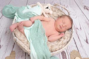 Neugeborenenshooting Korb Stofftier